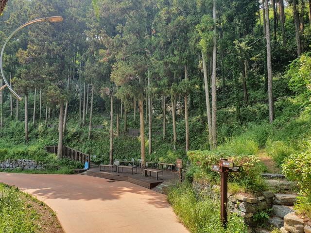 1112.통영시, 숲 해설 프로그램 운영-생태숲 야외교육장.jpg